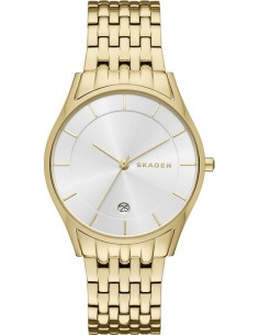 Chic Time | Montre Femme Skagen Holst SKW2389 Or  | Prix : 131,40 €