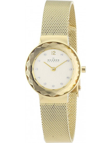 Chic Time | Montre Femme Skagen 456SGSG  | Prix : 159,00€