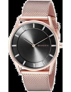 Chic Time | Montre Femme Skagen Holst SKW2378 Or Rose  | Prix : 189,00€