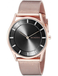 Chic Time | Montre Femme Skagen Holst SKW2378 Or Rose  | Prix : 189,00 €