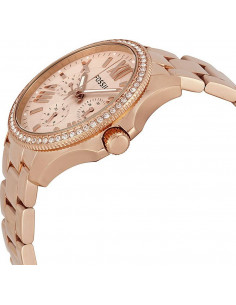 Am4483 En Stock Montre Femme Fossil Cecile Am4483 Or Rose à 1690