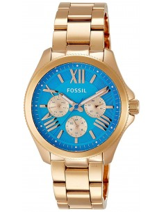 Chic Time   Fossil AM4556 women's watch    Buy at best price