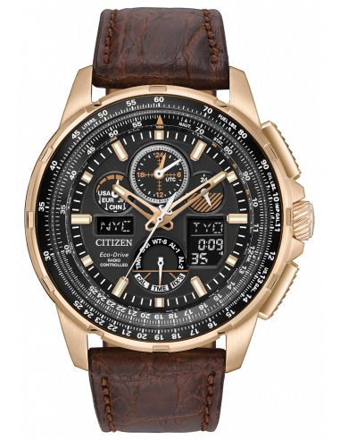 Chic Time | Montre Homme Citizen JY8056-04E Marron  | Prix : 455,40 €