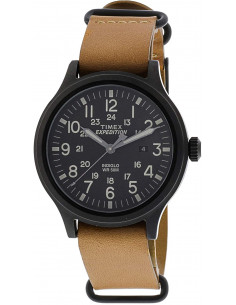 Chic Time | Montre Homme Timex Expedition Scout TWG016200  | Prix : 125,93 €