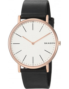 Chic Time | Skagen SKW6430 men's watch  | Buy at best price