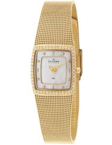Chic Time   Skagen 384XSGG1 women's watch    Buy at best price