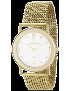 Chic Time   Montre Femme Skagen 39LGG1 Bracelet émaillé    Prix : 111,75€
