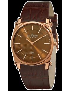 Chic Time   Montre Homme Skagen 859LRLD Bracelet cuir brun    Prix : 74,50€