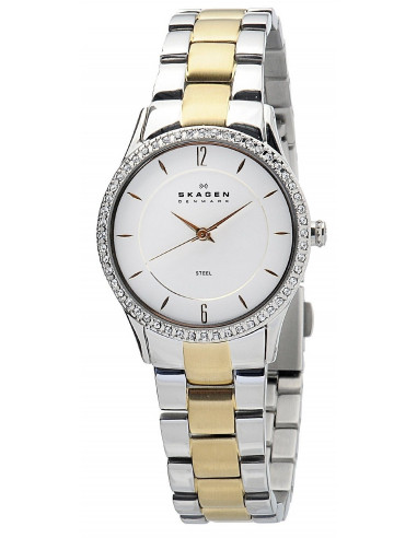 Chic Time   Skagen 347SSGX women's watch    Buy at best price