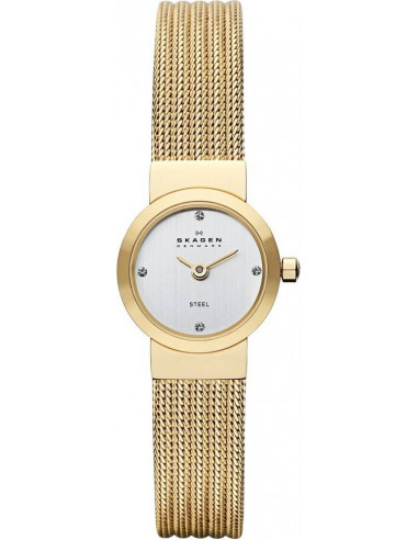 Chic Time | Montre Femme Skagen SKW2009 Bracelet Acier Inoxydable  | Prix : 104,90€